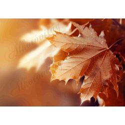 Fotóháttér  termékfotózáshoz - Őszi levél narancsos színekben