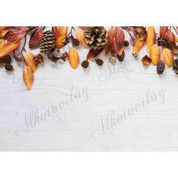 Fotóháttér  termékfotózáshoz - Őszi színes levelek tobozokkal